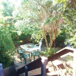Buena Vista Beach House front garden - Nambucca Heads holiday rentals - holiday lettings. Mid North Coast accommodation near Valla Beach