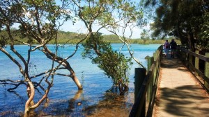 Nambucca Heads holiday rentals - holiday lettings. Mid North Coast accommodation near Valla Beach - Nambucca Heads Boardwalk high tide