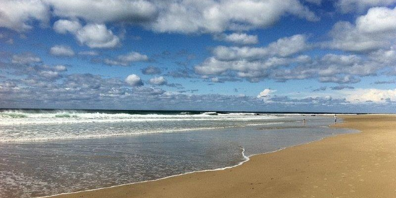 Sanctuary Bush to Beach House